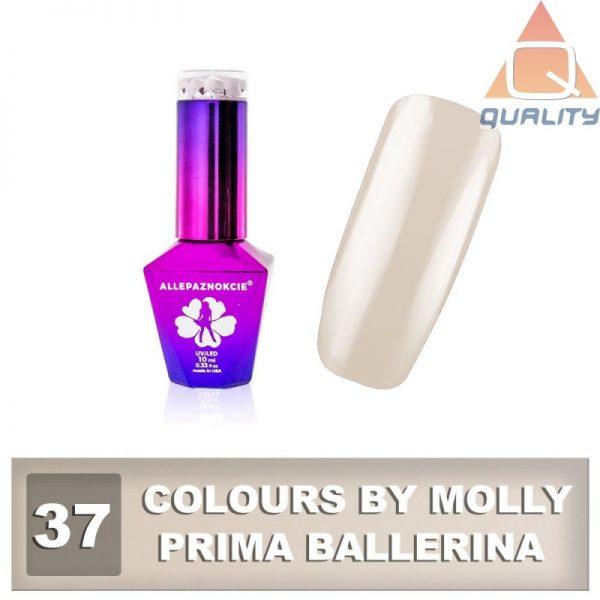 Colours by Molly Lakier hybrydowy - Prima Ballerina 37